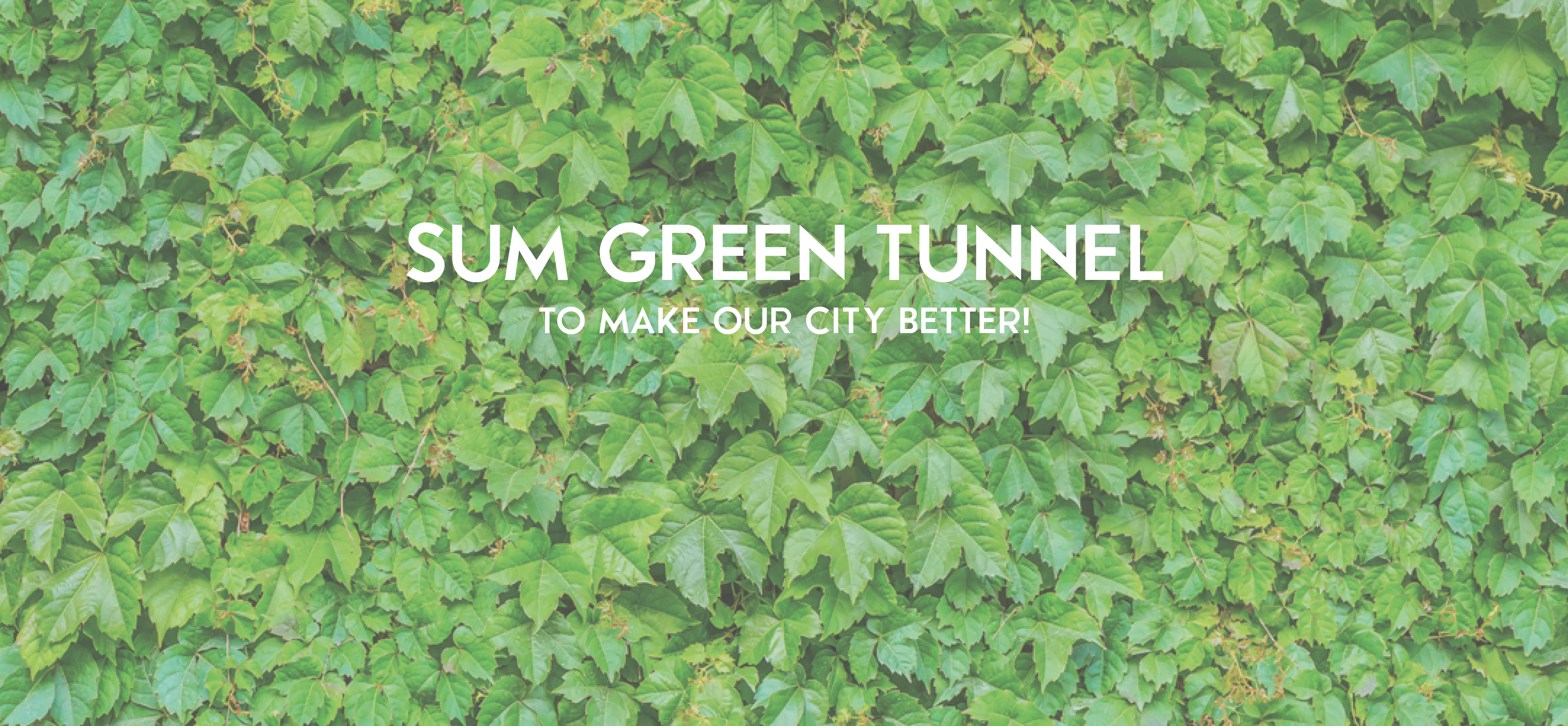 SUM Green Tunnel