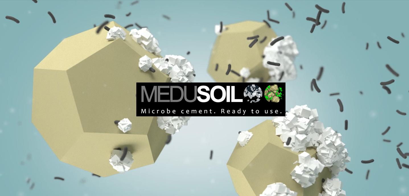 MeduSoil