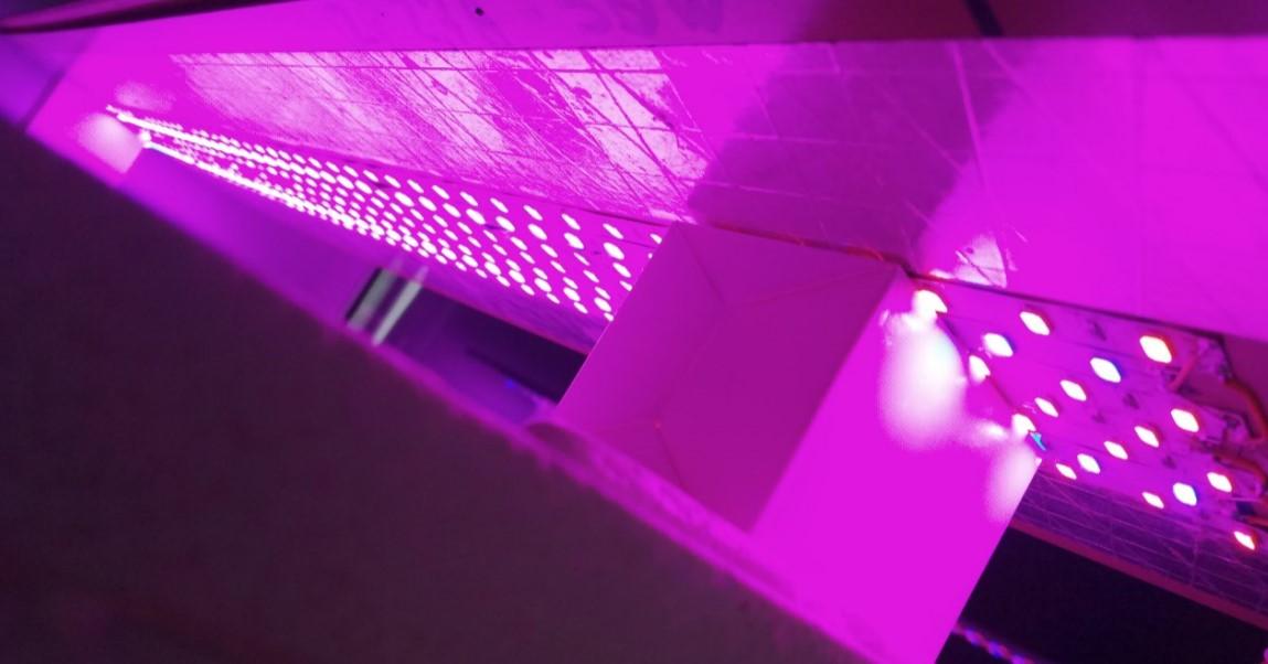 Life Cube Ecoponics